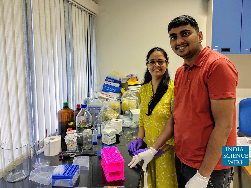 New hope for treating inflammation-induced anemia--India Science Wire