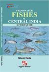 fishessmall